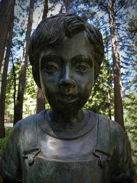 Photograph - Forest Child by Frank Wilson