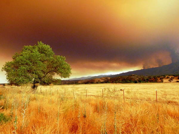 Photograph - Forest Fire Smoke Over Pasture And Oak by Jeff Lowe