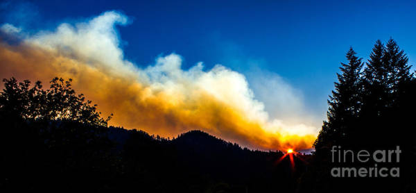 Photograph - Forest Fire Sunset by Michael Cross