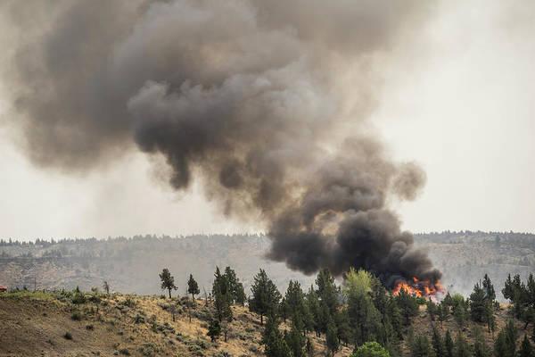 Wall Art - Photograph - Forest Fire by Terry Schmidbauer