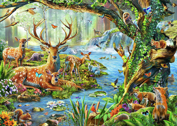 Fox River Wall Art - Painting - Forest Life by MGL Meiklejohn Graphics Licensing