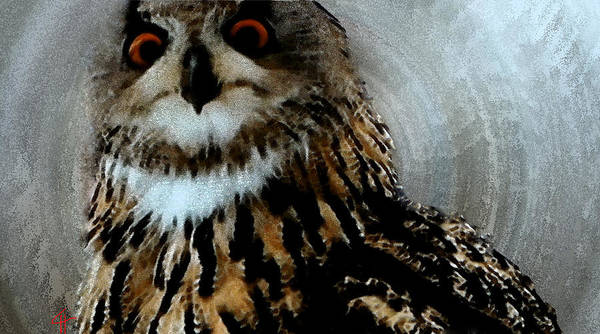 Painting - Forest Owl  by Colette V Hera  Guggenheim