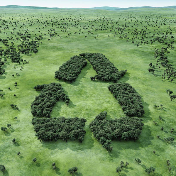 Symbol Photograph - Forest Shaped Recycling Symbol by Hiroshi Watanabe