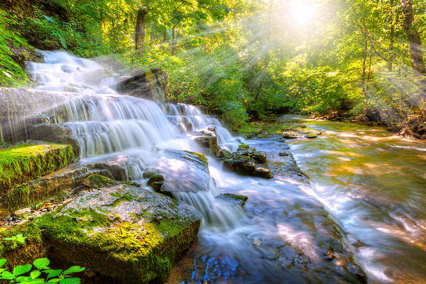 Village Creek Photograph - Forest Stream And Waterfall by Alexey Stiop