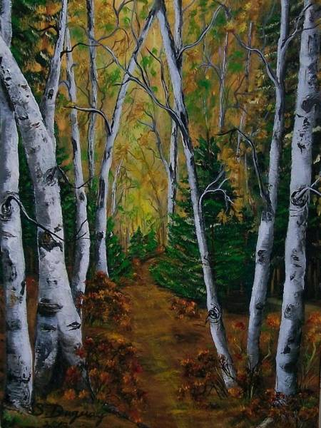 Painting - Birch Tree Forest Trail  by Sharon Duguay