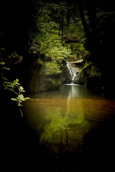 Hocking Hills Photograph - Forest Waterfall by Pat Eisenberger
