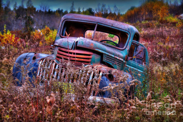Photograph - Forgotten  by Alana Ranney