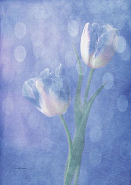 Tulips Mixed Media - Forgotten Dreams by Georgiana Romanovna
