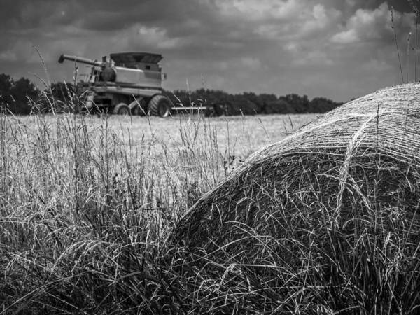 Monocacy Wall Art - Photograph - Forgotten Harvest by Andy Smetzer