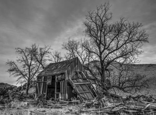 Photograph - Forgotten by Loree Johnson