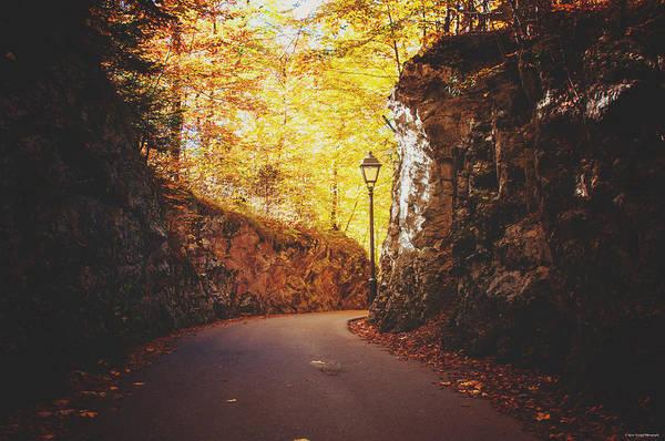 Photograph - Forgotten Path by Ryan Wyckoff