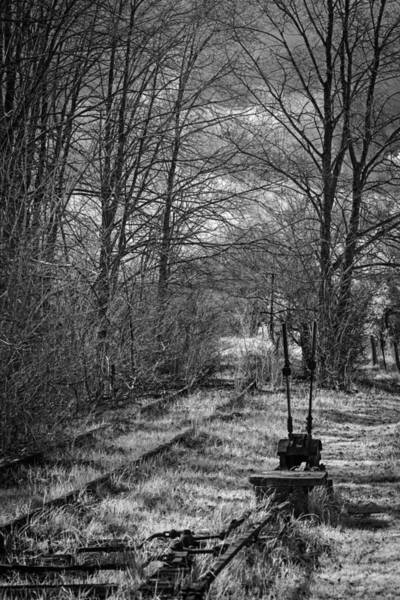 Photograph - Forgotten Railway 2 by Russell Brown