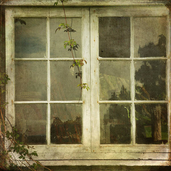 Photograph - Forgotten by Sally Banfill