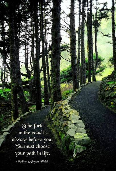 Endorsement Photograph - Fork In The Road by Mike Flynn