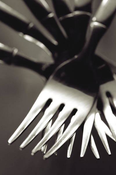 Photograph - Forks by Matthew Pace