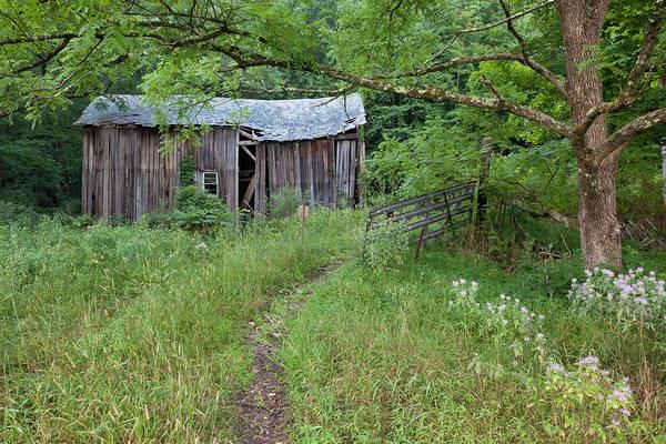 Photograph - Forsaken Farm by Denise Bush