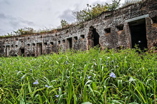 Photograph - Fort Macomb Overgrown by Andy Crawford