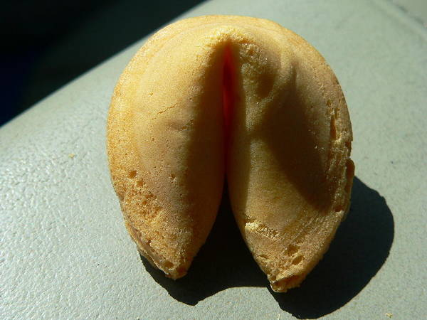Photograph - Fortune Cookie by Jeff Lowe