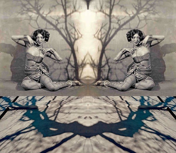Photograph - Forty Years Before I Was Born I Dreamt Myself Beneath Vahdah's Tree 2013 by James Warren