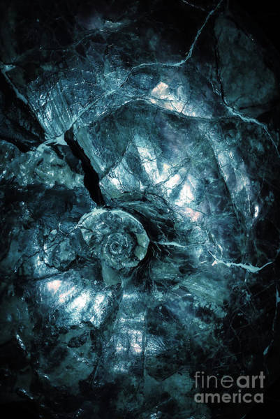 Photograph - Fossil Blue Abstract by Edward Fielding