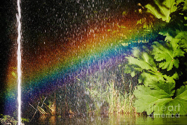 Photograph - Fountain And Rainbow by Nick  Biemans