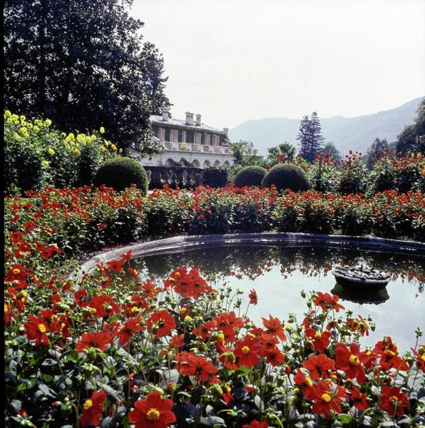 Ornamental Plant Photograph - Fountain In Villa Agnelli Garden by Horst P. Horst