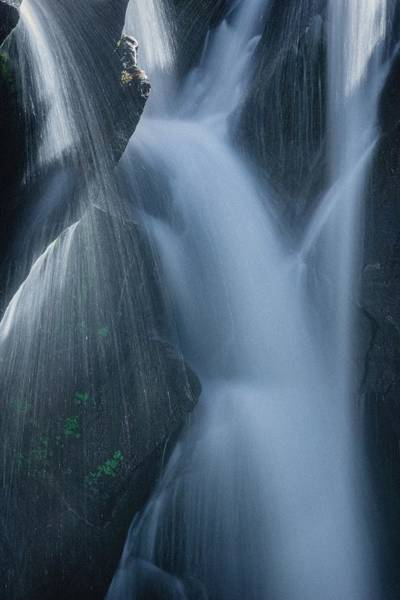 Photograph - Fountain Nature by Gene Garnace