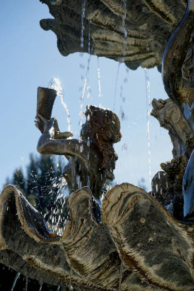 Photograph - Fountain Of Youth by Giorgio Tuscani