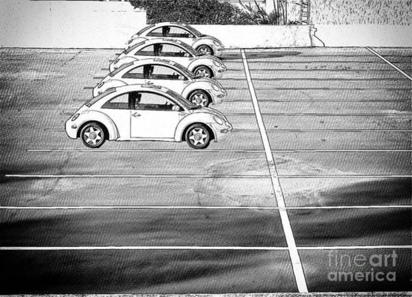 Photograph - Four Bugs by Les Palenik