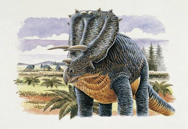 Cretaceous Wall Art - Photograph - Four Dinosaurs In Landscape by Deagostini/uig/science Photo Library