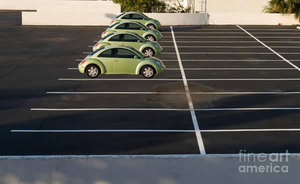 Four Green Beetles Art Print