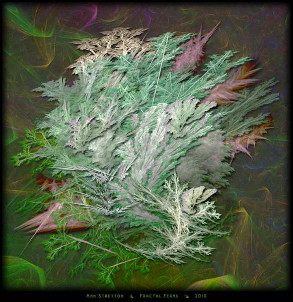 Digital Art - Fractal Ferns by Ann Stretton