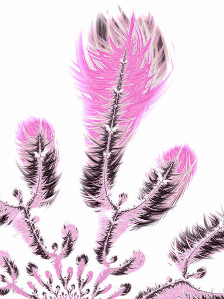 Digital Art - Fractal Flower Digital Artwork Light Pastel Pink by Matthias Hauser