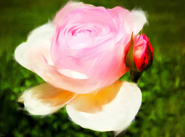 Rose Bud Digital Art - Fragility by Lourry Legarde