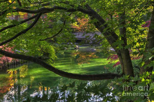 Manito Park Spokane Photograph - Framed Bridge -  Nishinomiya Japanese Garden by Mark Kiver