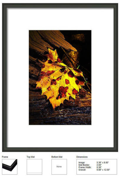Photograph - Framed Print Example by Jeff Kurtz