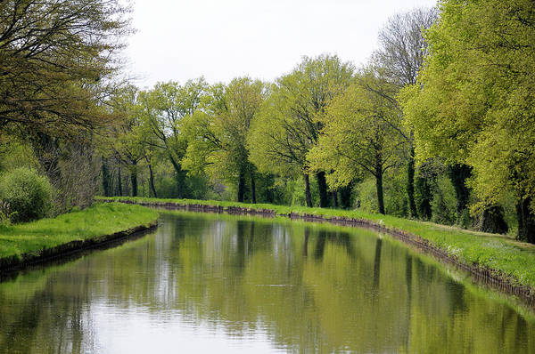 Burgundy Photograph - France, Loire Trees Lining The Canal by Kevin Oke