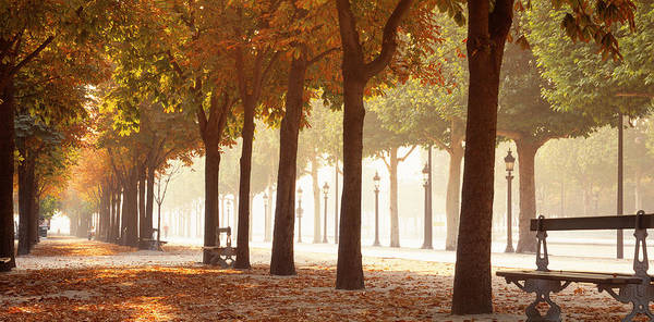 Leisurely Photograph - France, Paris, Champs Elysees by Panoramic Images