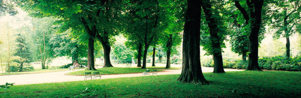 Jardin Photograph - France, Paris, Jardin Du Luxembourg by Panoramic Images
