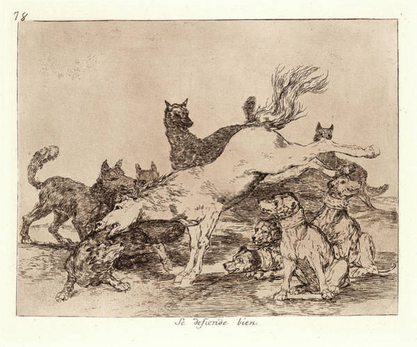 Wall Art - Drawing - Francisco De Goya Spanish, 1746-1828. He Defends Himself by Litz Collection