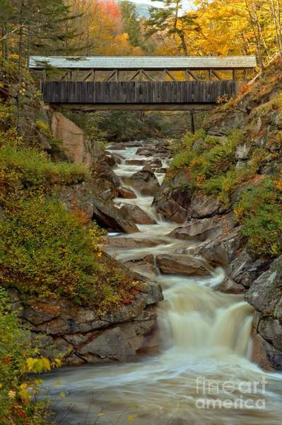 Franconia Notch State Park Photograph - Franconia Notch Gorge Covered Bridge by Adam Jewell