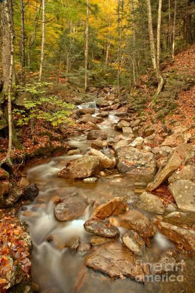 Photograph - Franconia Notch Stream by Adam Jewell