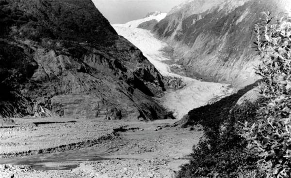 Wall Art - Photograph - Franz Joseph Glacier In 1960 by Nsidc, Wdc/science Photo Library