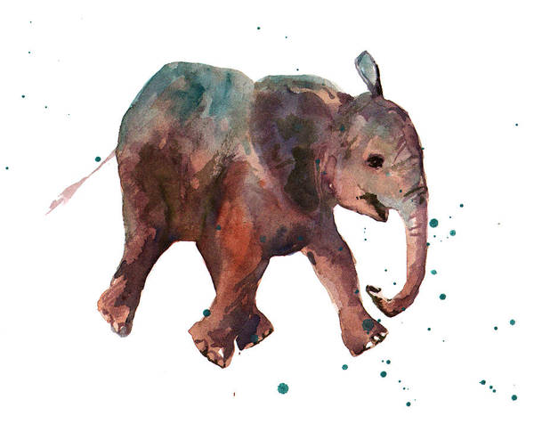Wall Art - Painting - Freddie Funtime Elephant by Alison Fennell