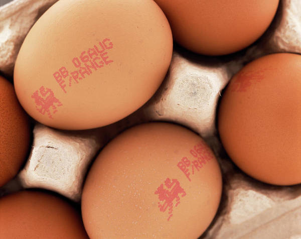 Free Range Photograph - Free-range Eggs by Adrienne Hart-davis/science Photo Library