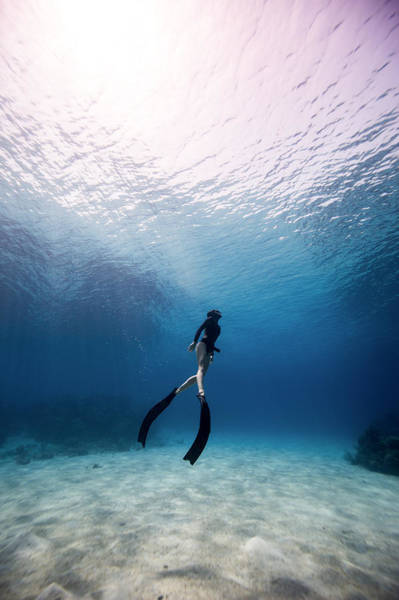 Freediver Art Print by One ocean One breath