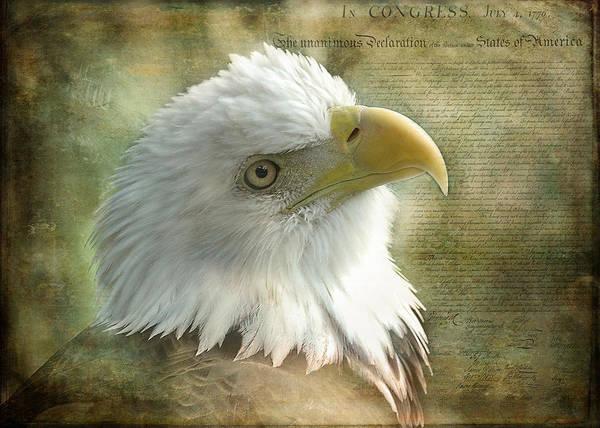 Declaration Of Independence Digital Art - Freedom by KJ DeWaal