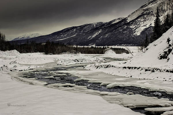 Photograph - Freeze-up At Dan Creek by Fred Denner