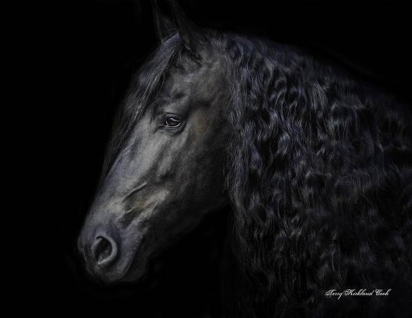 Photograph - Friesian Stallion by Terry Kirkland Cook