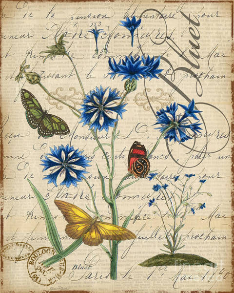 Insect Mixed Media - French Botanical-bluet by Jean Plout